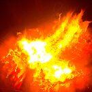 Phoenix fire bird  by Followthedon