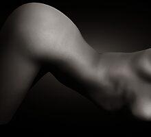 Spline by ikonvisuals