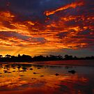 A Wynyard Sunset 3 by Paul Campbell  Photography