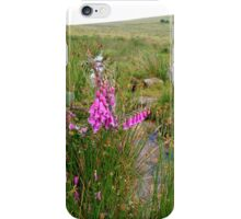 Foxgloves on the Moors iPhone Case/Skin