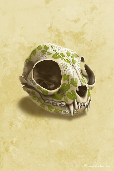 cat skull decorated with wasabi flowers by Richard Morden