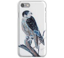 Pelegrine Falcon - bird of prey - Australia iPhone Case/Skin