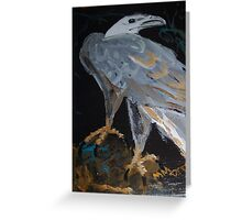 Sea Eagle - bird of prey - Australia Greeting Card