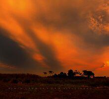 Twilight _Hazratpur-9 by HamimCHOWDHURY