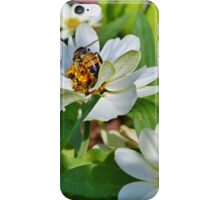 In the Garden Gathering Goodies iPhone Case/Skin