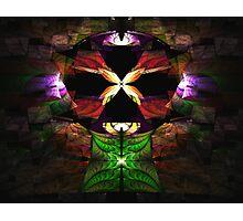 Elliptic Splits Tutorial - Butterfly Shrine Photographic Print