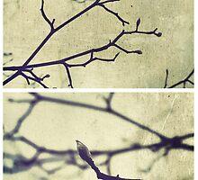 Spring II by Sybille Sterk