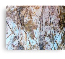 Rock Etchings Canvas Print