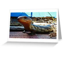 What you doing Blue Tongued Lizard Greeting Card