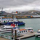Lyttelton Port by Werner Padarin