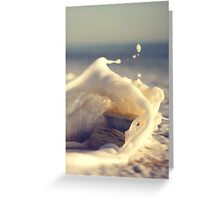Quijote goes diving Greeting Card