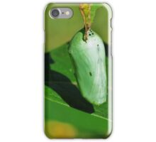 Monarch Butterfly Cacoon  iPhone Case/Skin