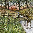 The Path of Dreams by Elle J Wilson