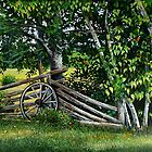 """By The Rail Fence"" by Frank Boudreau"