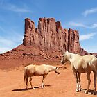 Free at Monument Valley by SHickman