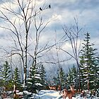 """Whitetail Alert"" by Frank Boudreau"
