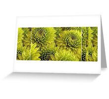 Mum's The Word: The Mum's Are Green Greeting Card