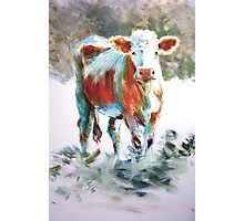 The Courage of Youth - Acrylic Cow Painting Photographic Print