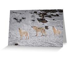 Wolf Karaoke Greeting Card
