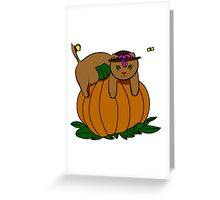 Clipart Kitten  Greeting Card
