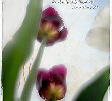 His mercies by Olga