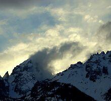 """Teton National Park III"" by Breanna Stewart"