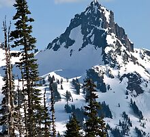 Mountain Beauty - Washington State by timmcmurdo