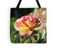 Beautiful Multi-Colored Rose  Tote Bag