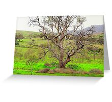 Nest in the tree Greeting Card