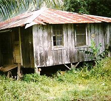 Old Shack in Waipio Valley, Big Island, Hawai`i by EJ27