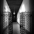 The gate is open by Cleber Photography Design