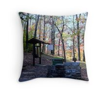 Starting point to the overlook at Hawks Nest SP in WV Throw Pillow