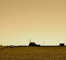 Summer Sepia - on the Farm by timmcmurdo