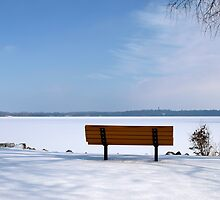 Cold Day on the Lake by timmcmurdo
