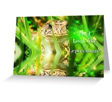 Do I look like a Leprechaun? Greeting Card