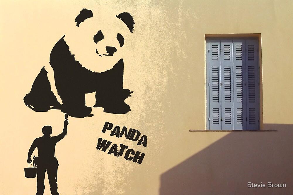 Panda Watch by Stevie B