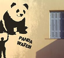 Panda Watch by Stevie B