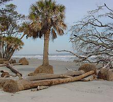 Hunting Beach, South Carolina by BLemley
