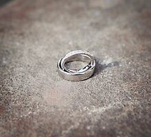Wedding Rings on Stone by Camille Wesser