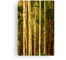 Wet Mountain Ash Trees Canvas Print