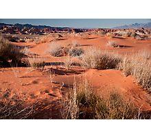 Desert Sands Photographic Print