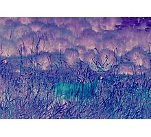 Blue Ghost Photographic Print
