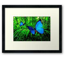 Butterfly Deam III Framed Print