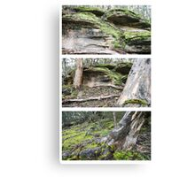 Flinders Chase Triptych Canvas Print