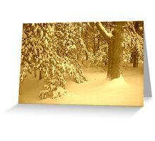 Sepia Snow Greeting Card