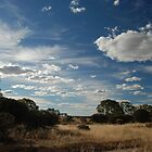 Wheatbelt skies by Adrian Kent