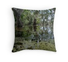 darling  river anabranch , in flood Throw Pillow