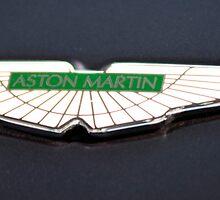 Aston's Wings by Rene Fuller