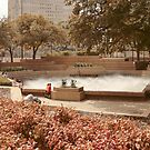 Fort Worth Water Gardens by Susan Russell