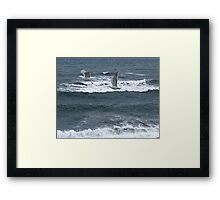 Gulls Over Waves Framed Print